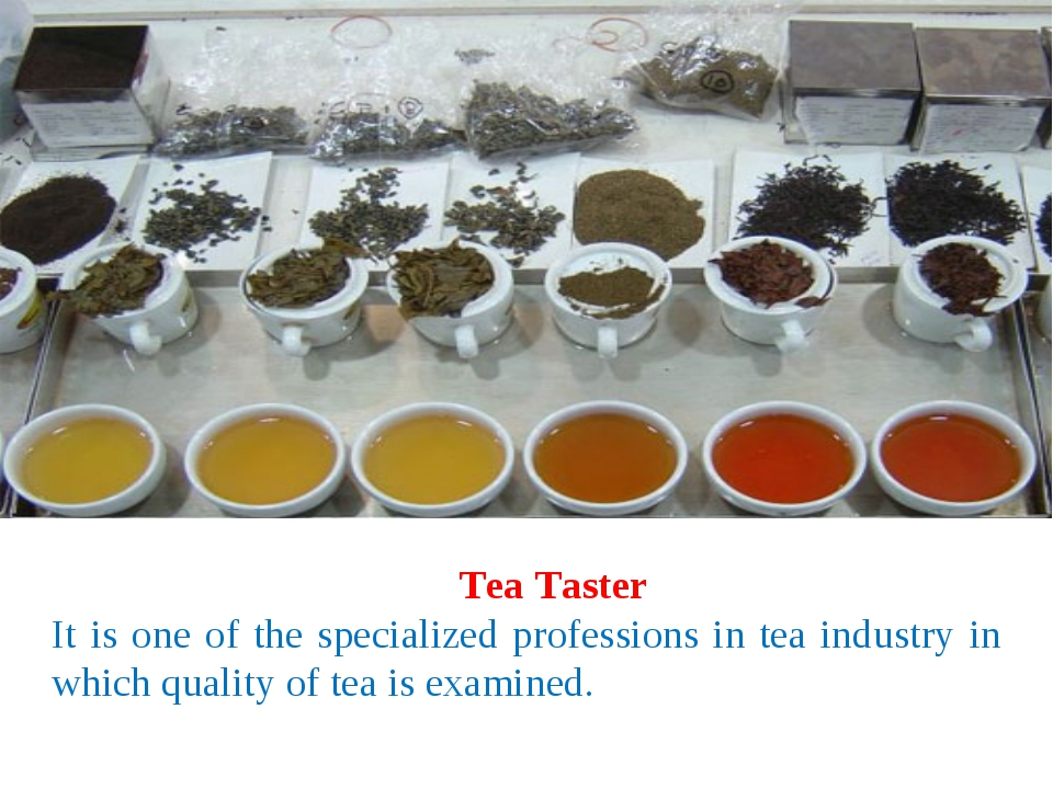 Tea Taster It is one of the specialized professions in tea industry in which...