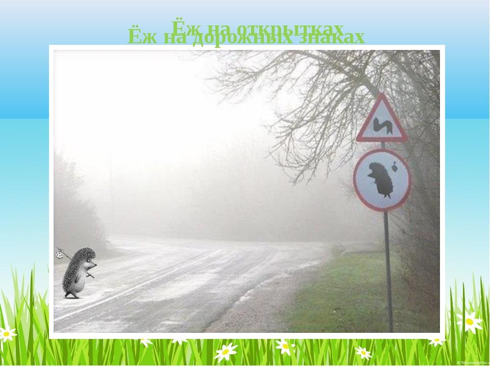 Ёж на открытках Ёж на дорожных знаках