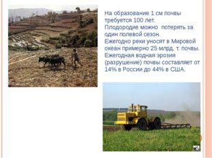 На образование 1 см почвы требуется 100 лет. Плодородие можно потерять за оди
