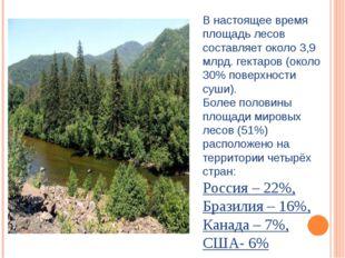 В настоящее время площадь лесов составляет около 3,9 млрд. гектаров (около 30