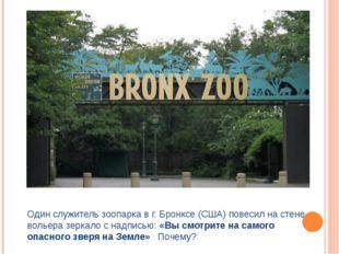 Один служитель зоопарка в г. Бронксе (США) повесил на стене вольера зеркало с