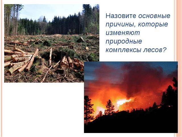 Назовите основные причины, которые изменяют природные комплексы лесов?
