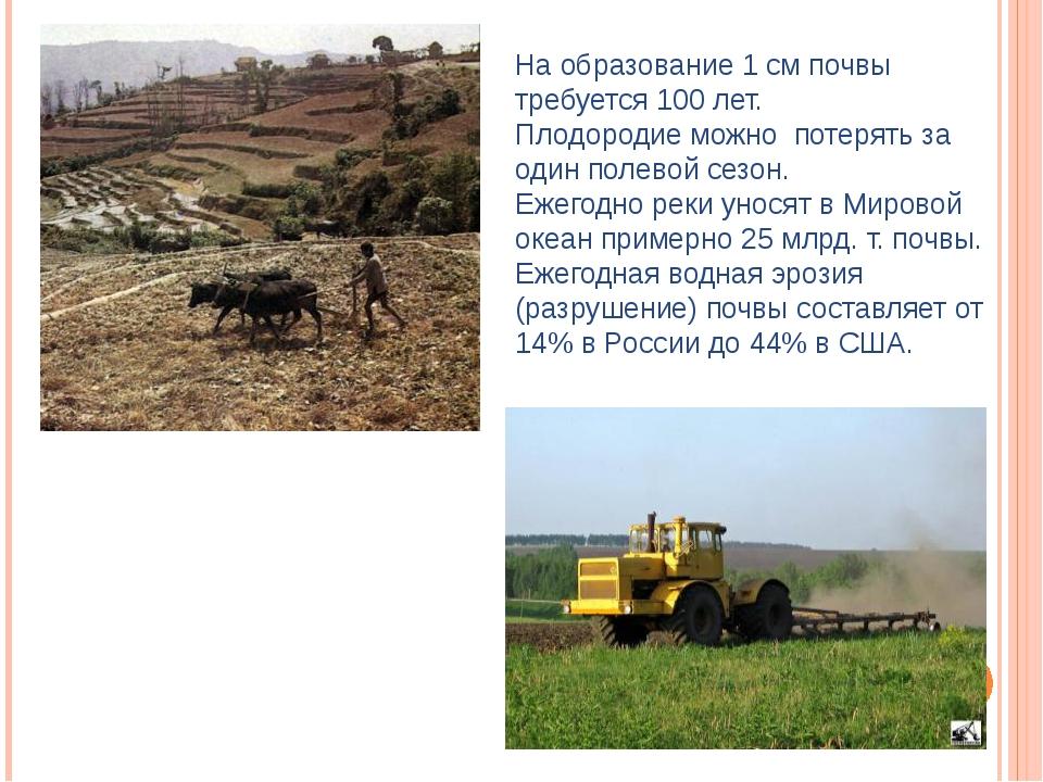 На образование 1 см почвы требуется 100 лет. Плодородие можно потерять за оди...