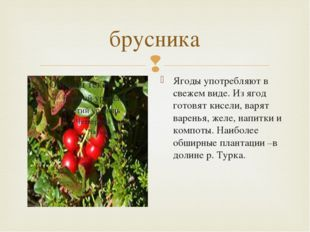 брусника Ягоды употребляют в свежем виде. Из ягод готовят кисели, варят варен
