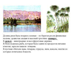 Долина реки была покрыта зеленью – по берегам росли финиковые пальмы, душисты