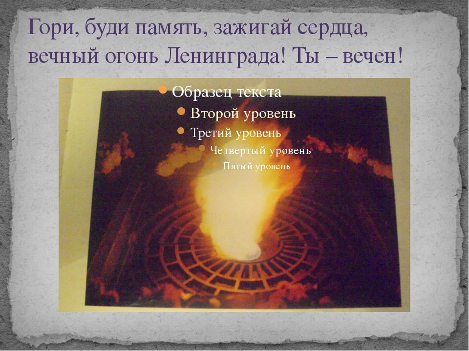 Гори, буди память, зажигай сердца, вечный огонь Ленинграда! Ты – вечен!
