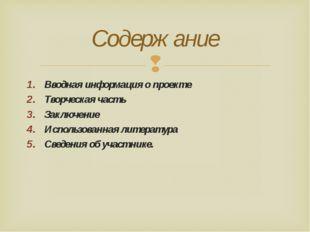 Вводная информация о проекте Творческая часть Заключение Использованная литер