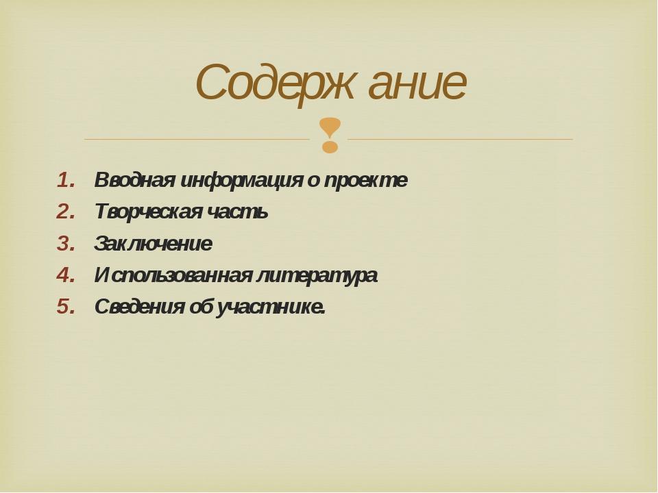 Вводная информация о проекте Творческая часть Заключение Использованная литер...