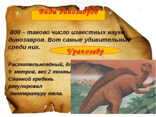 800 – таково число известных науке динозавров. Вот самые удивительные среди