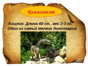 Хищник. Длина 60 см., вес 2-3 кг. Один из самых мелких динозавров. Компсогнат