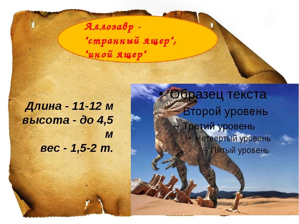 """Аллозавр- """"странный ящер"""", """"иной ящер"""" Длина - 11-12 м высота - до 4,5 м ве..."""