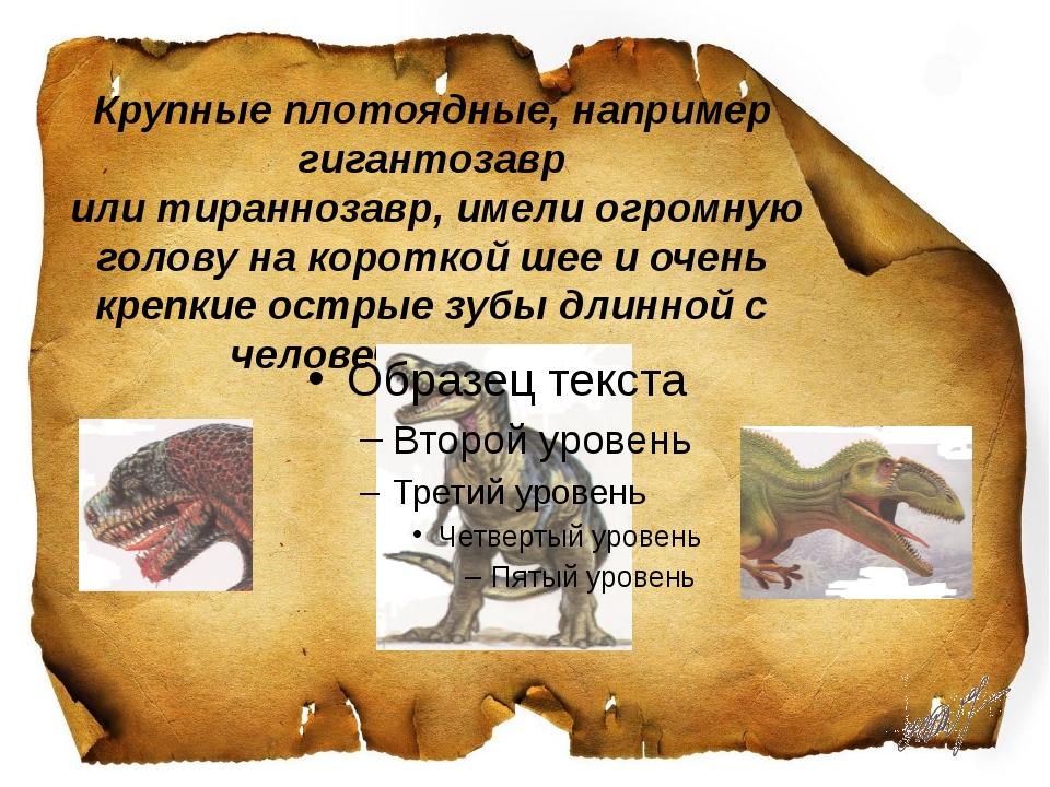 Крупные плотоядные, например гигантозавр или тираннозавр, имели огромную гол...