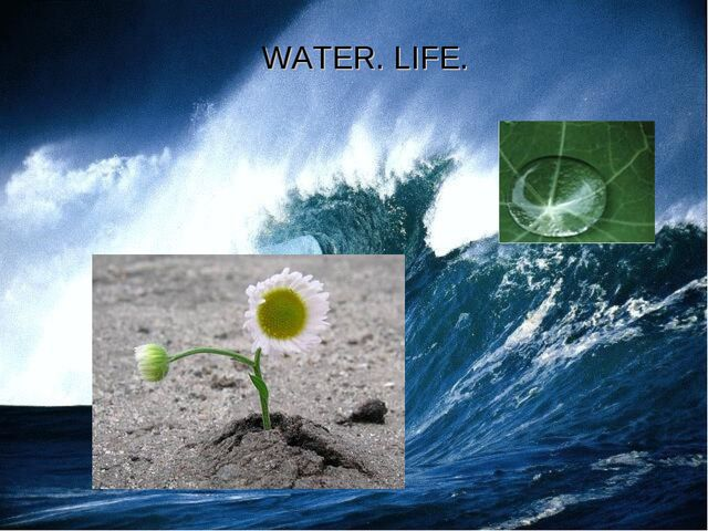 WATER. LIFE.