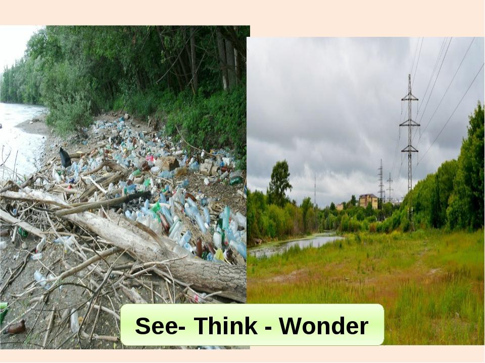 See- Think - Wonder