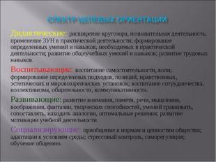 Дидактические: расширение кругозора, познавательная деятельность; применение