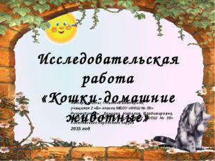 Автор работы: Плынина Екатерина, учащаяся 2 «Б» класса МБОУ «ООШ № 35» Руков