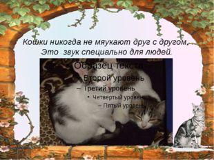 Кошки никогда не мяукают друг с другом. Это звук специально для людей. http: