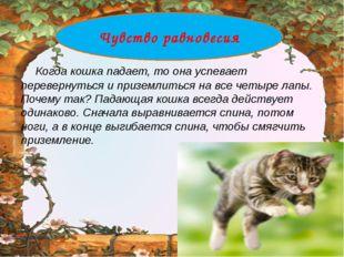 Когда кошка падает, то она успевает перевернуться и приземлиться на все четы