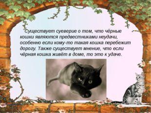 Существует суеверие о том, что чёрные кошки являются предвестниками неудачи,