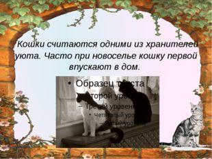 Кошки считаются одними из хранителей уюта. Часто при новоселье кошку первой