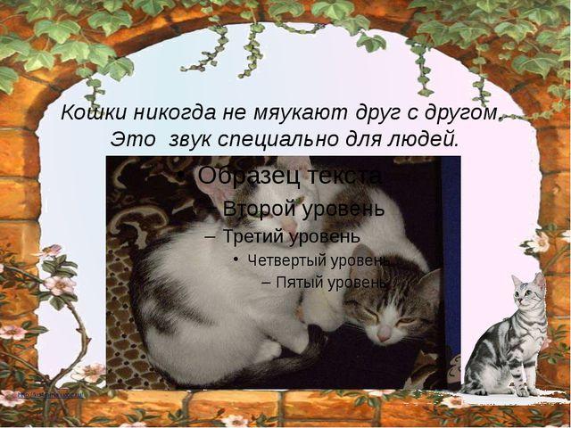 Кошки никогда не мяукают друг с другом. Это звук специально для людей. http:...