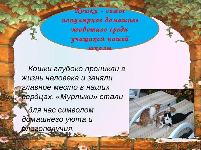 Кошки глубоко проникли в жизнь человека и заняли главное место в наших сердц...