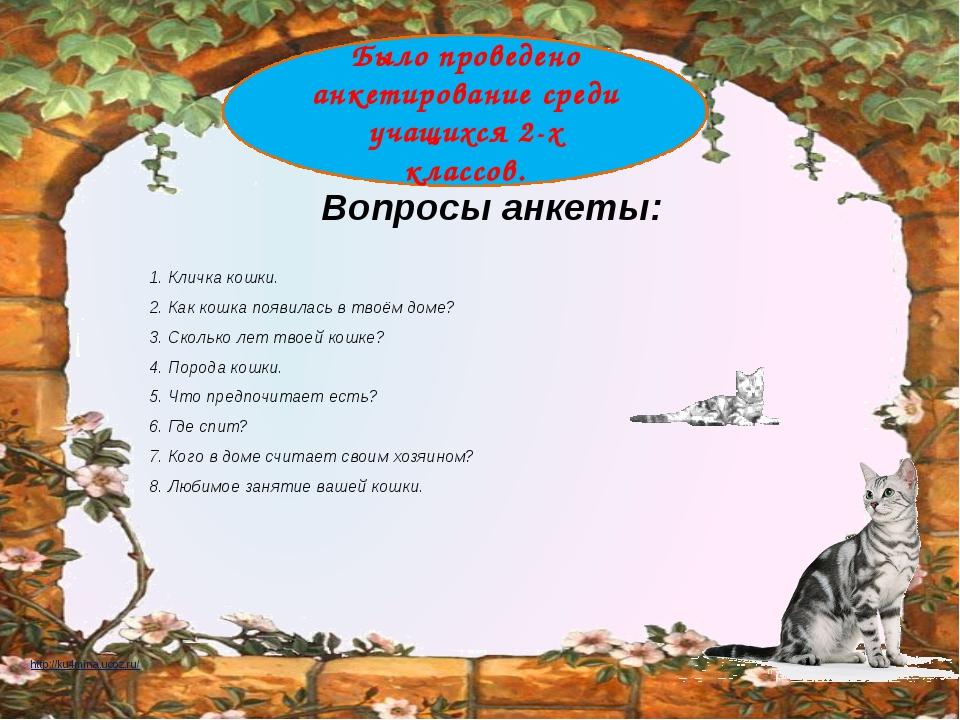 Вопросы анкеты: 1. Кличка кошки. 2. Как кошка появилась в твоём доме? 3. Ско...