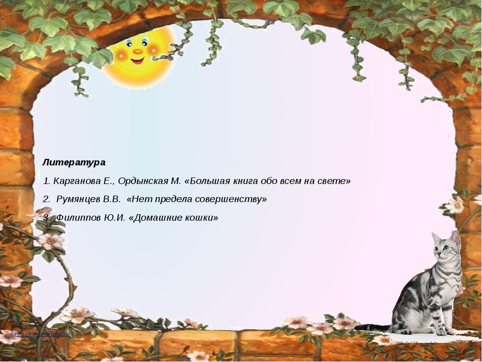 Литература 1. Карганова Е., Ордынская М. «Большая книга обо всем на свете» 2...