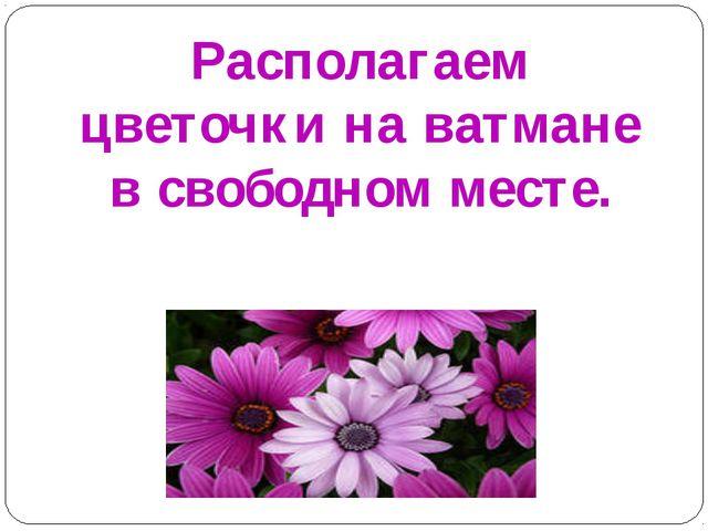 Располагаем цветочки на ватмане в свободном месте.