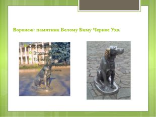 Воронеж: памятник Белому Биму Черное Ухо.