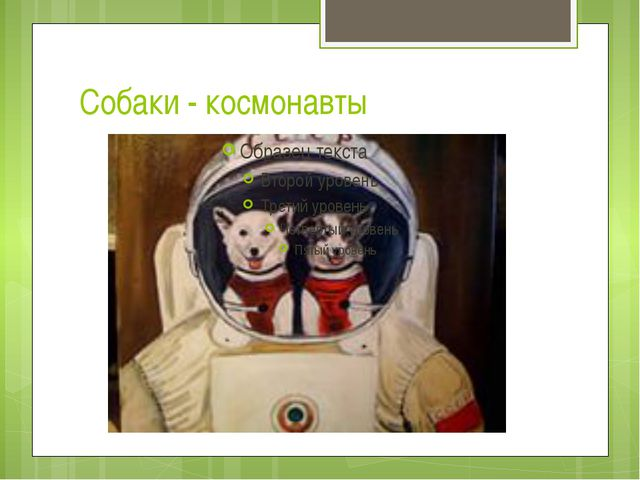 Собаки - космонавты