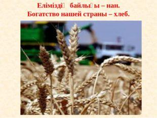 Еліміздің байлығы – нан. Богатство нашей страны – хлеб.