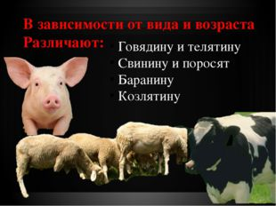В зависимости от вида и возраста Различают: Говядину и телятину Свинину и пор