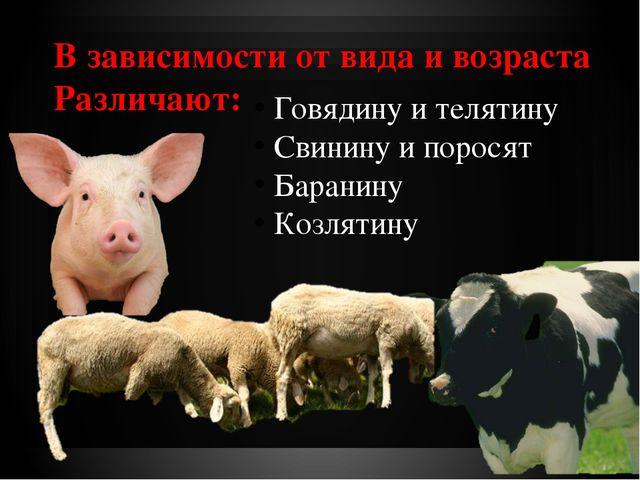 В зависимости от вида и возраста Различают: Говядину и телятину Свинину и пор...
