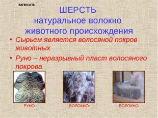 ШЕРСТЬ натуральное волокно животного происхождения Сырьем является волосяной