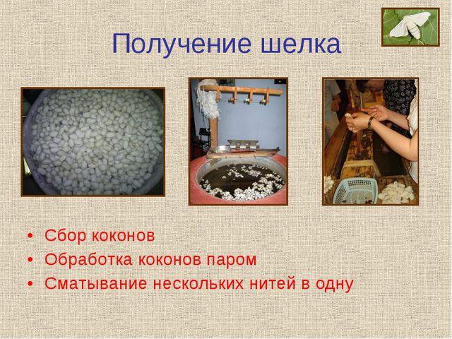 Получение шелка Сбор коконов Обработка коконов паром Сматывание нескольких ни...