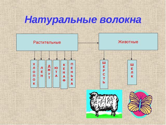 Натуральные волокна Растительные Х Л О П О К Л Е Н Д Ж У Т Ю Т А К Е Н А Ф П...