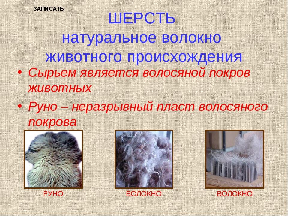 ШЕРСТЬ натуральное волокно животного происхождения Сырьем является волосяной...