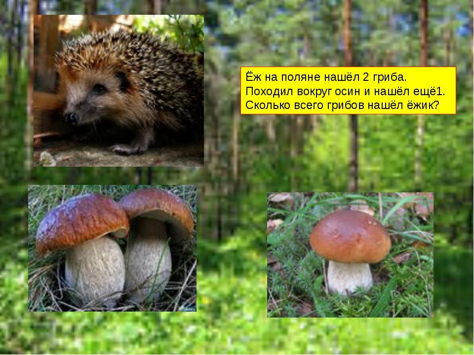 Ёж на поляне нашёл 2 гриба. Походил вокруг осин и нашёл ещё1. Сколько всего г...