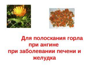 Для полоскания горла при ангине при заболевании печени и желудка