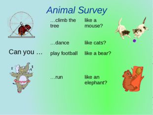 Animal Survey Can you … …climb the tree like a mouse? …dance like cats? play