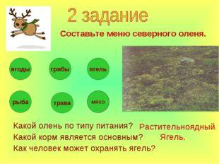 Какой олень по типу питания? Какой корм является основным? Как человек может