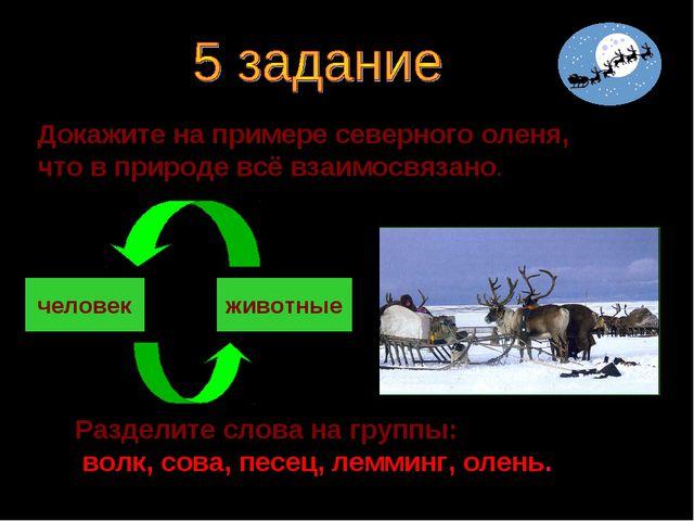 Докажите на примере северного оленя, что в природе всё взаимосвязано. человек...