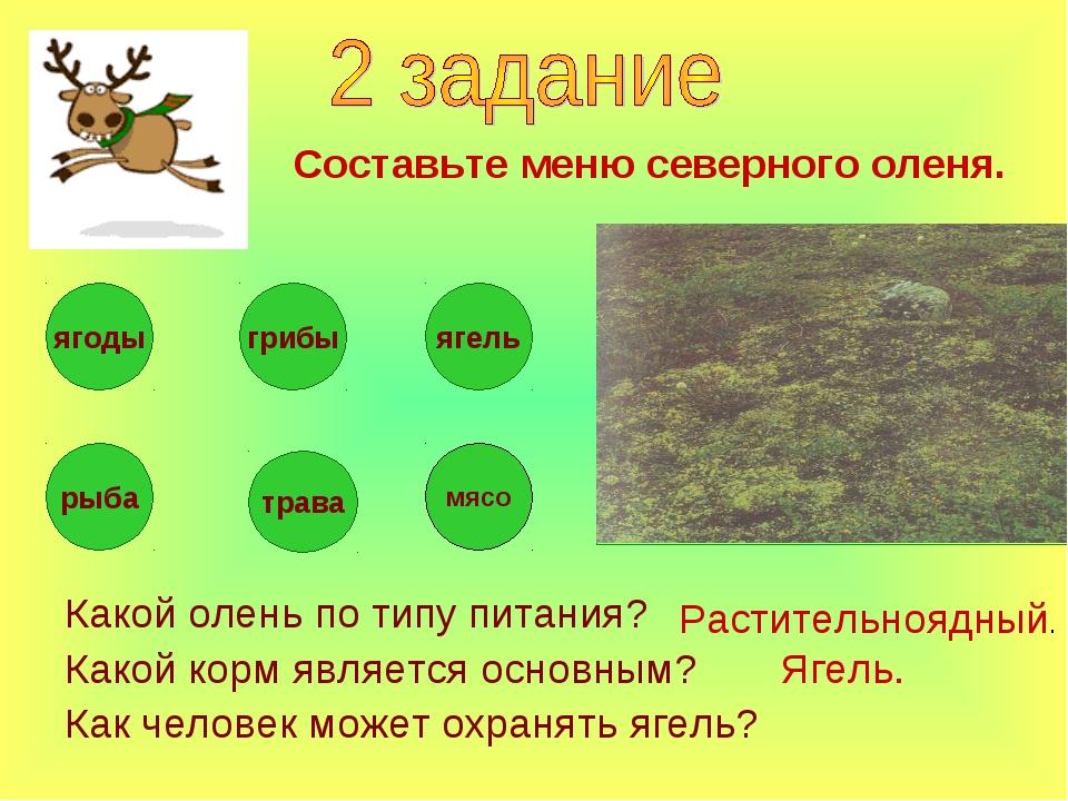 Какой олень по типу питания? Какой корм является основным? Как человек может...
