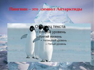 Пингвин – это символ Антарктиды