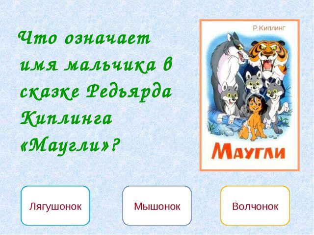 Лягушонок Мышонок Волчонок Что означает имя мальчика в сказке Редьярда Киплин...