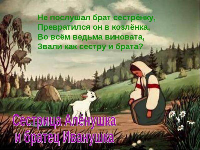 Не послушал брат сестрёнку, Превратился он в козлёнка, Во всём ведьма виноват...