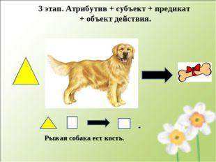 Рыжая собака ест кость. 3 этап. Атрибутив + субъект + предикат + объект дейст