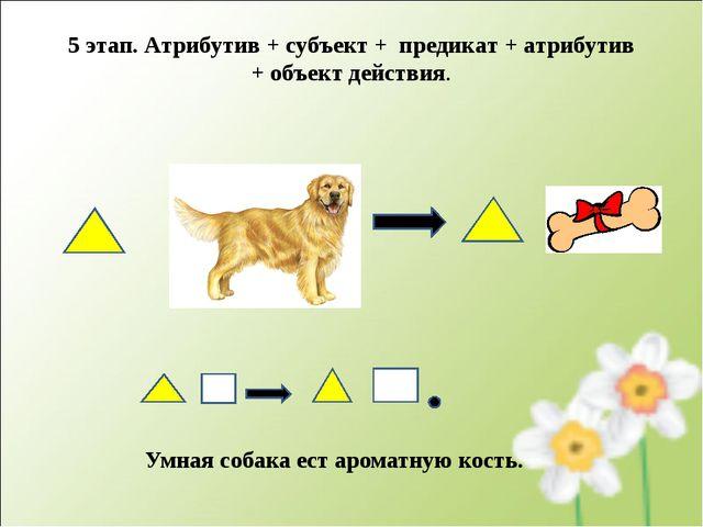 Умная собака ест ароматную кость. 5 этап. Атрибутив + субъект + предикат + ат...