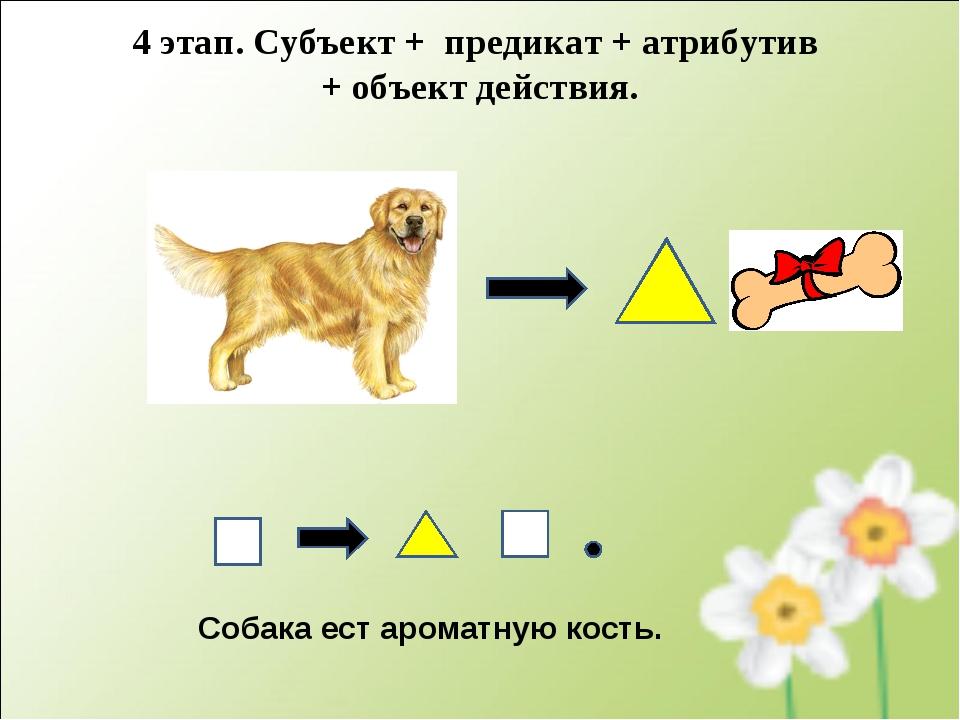 Собака ест ароматную кость. 4 этап. Субъект + предикат + атрибутив + объект д...